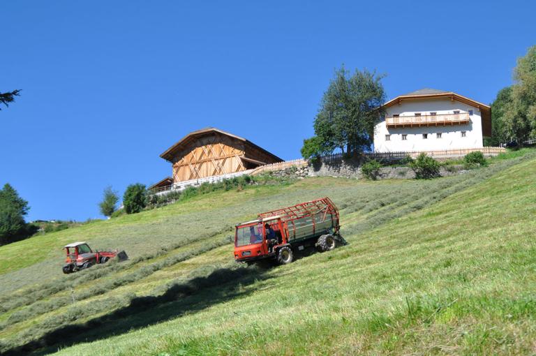 Agriturismo partecipativo Alto Adige-02